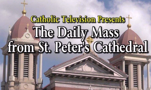Watching Daily Mass on-line